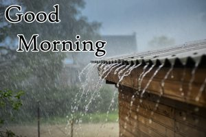 HD Rainy Good Morning Picture