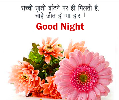 Hindi Quotes Good Night Picture