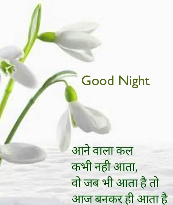 Hindi Quotes with Flowers and Good Night Wish