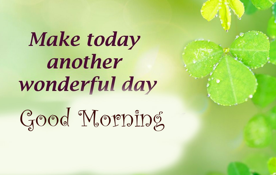 Latest Today Leaf Quotes Good Morning Pic
