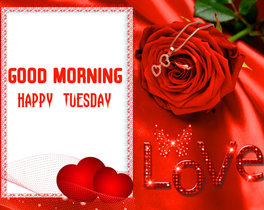 Love Good Morning Happy Tuesday Red Rose Image