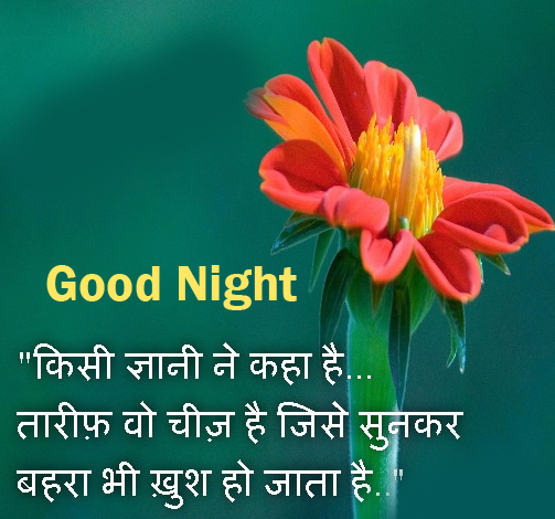 Meaningful Hindi Quotes Good Night Pic