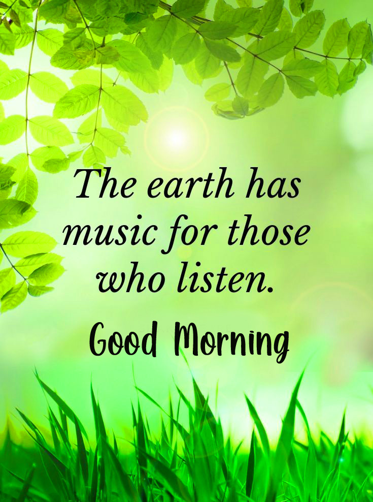 Quotes Leaves Good Morning Pic
