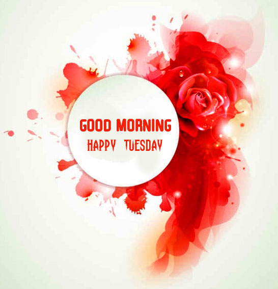 Red Flowers Good Morning Happy Tuesday Wallpaper