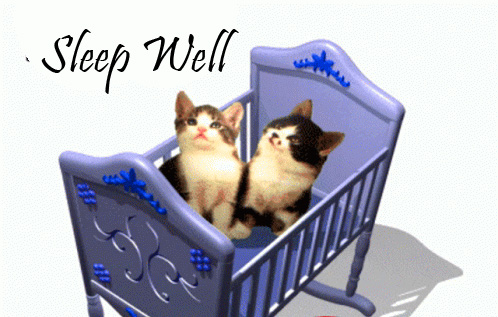 Sleep Well Message with Kittens