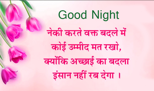 Tulips with Hindi Quotes and Good Night Wish
