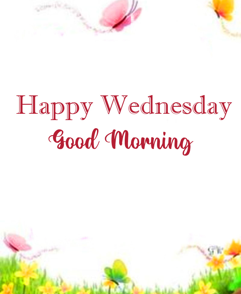 Beautiful Happy Wednesday Good Morning Wallpaper