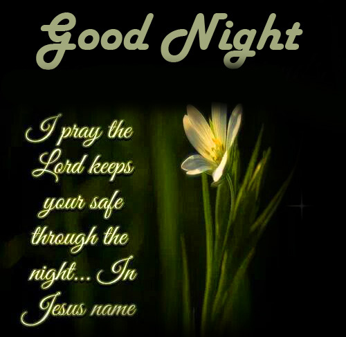 Beautiful Quote Good Night Blessing Image