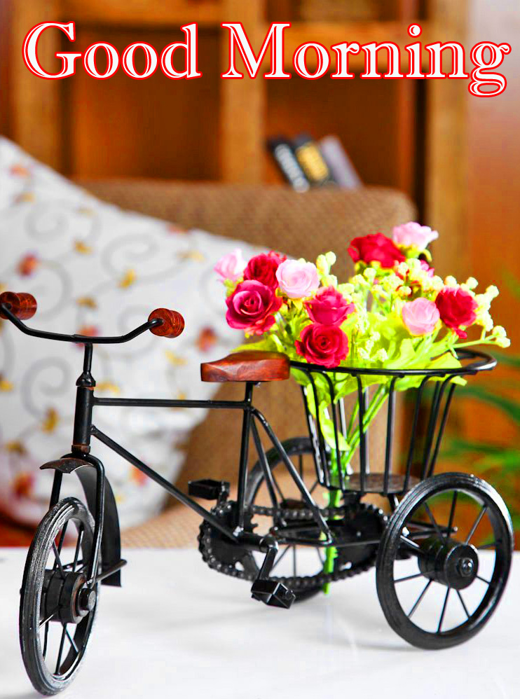 Bicycle Flower Good Morning Image