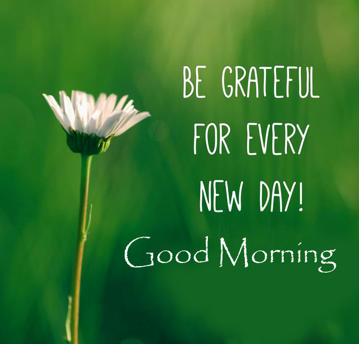 Blessing Quote Good Morning Image