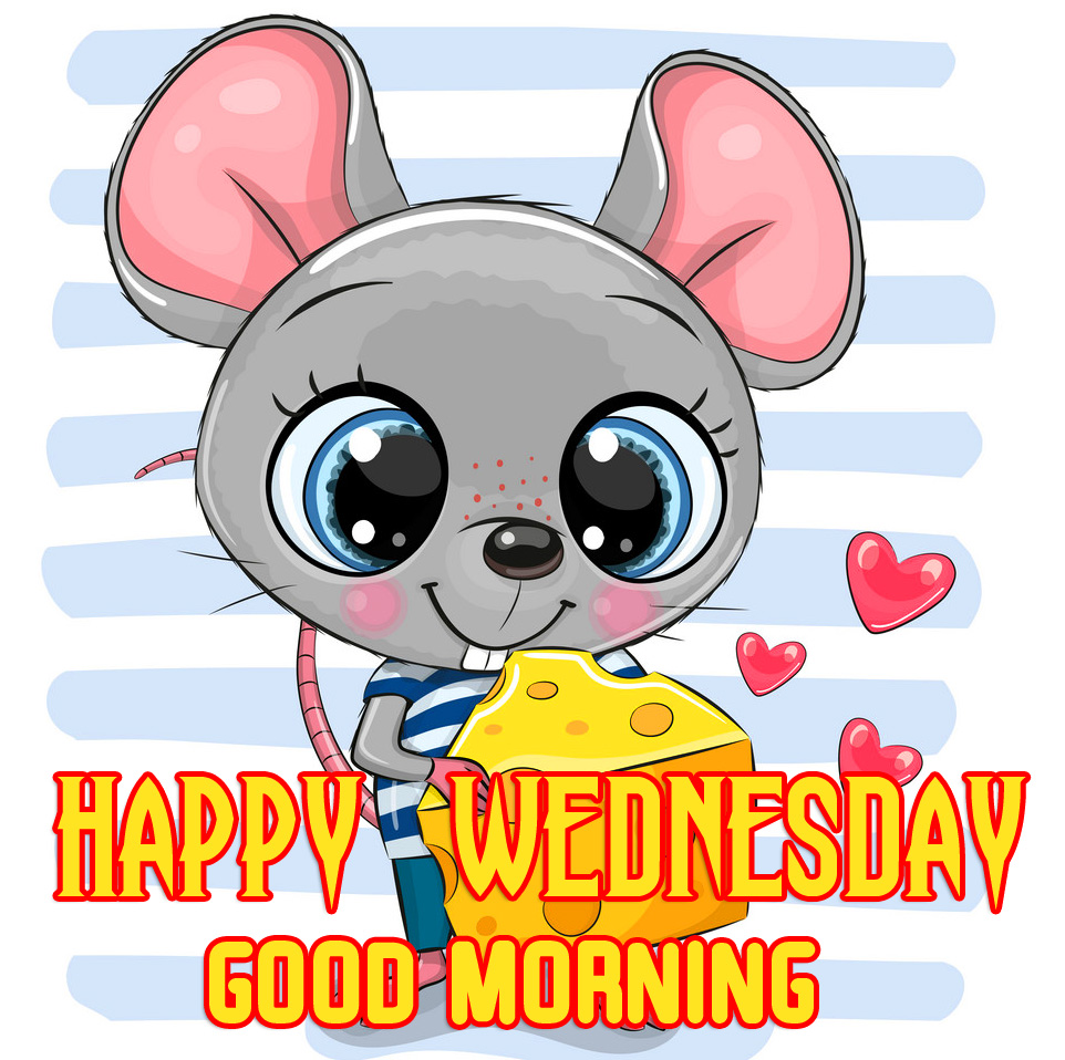 Cartoon Rat Happy Wednesday Good Morning Picture HD