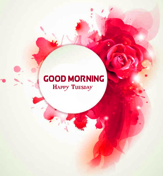 Colorful Good Morning Happy Tuesday Flowers Wallpaper