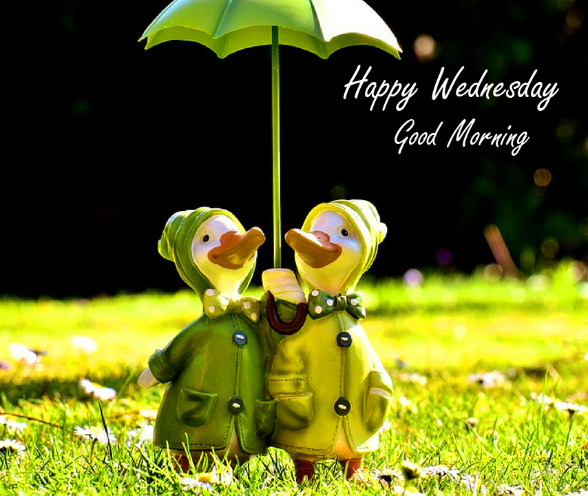Couple Cute Happy Wednesday Good Morning Wallpaper