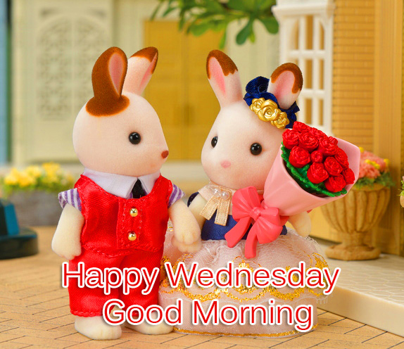 Cute Couple Happy Wednesday Good Morning Picture HD