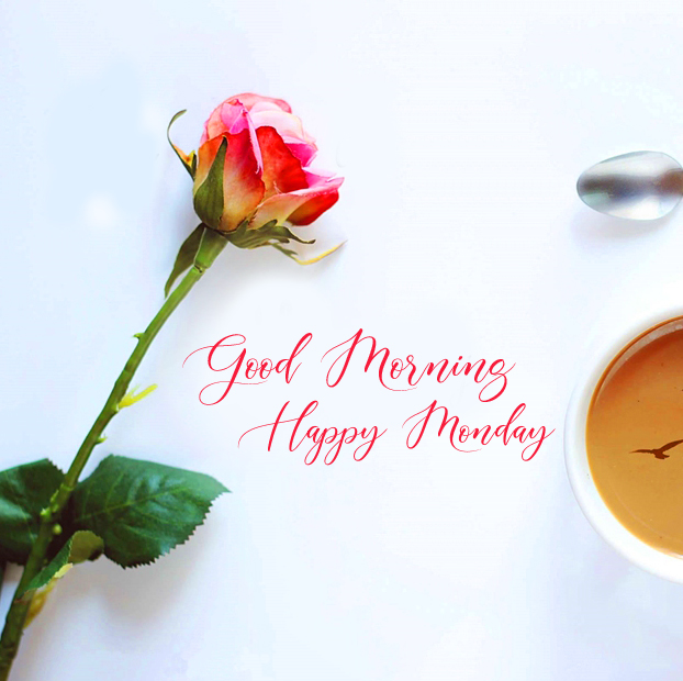 Cute Rose and Coffee Good Morning Happy Monday Image