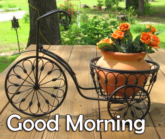 Decorative Flowers Cycle Good Morning Image