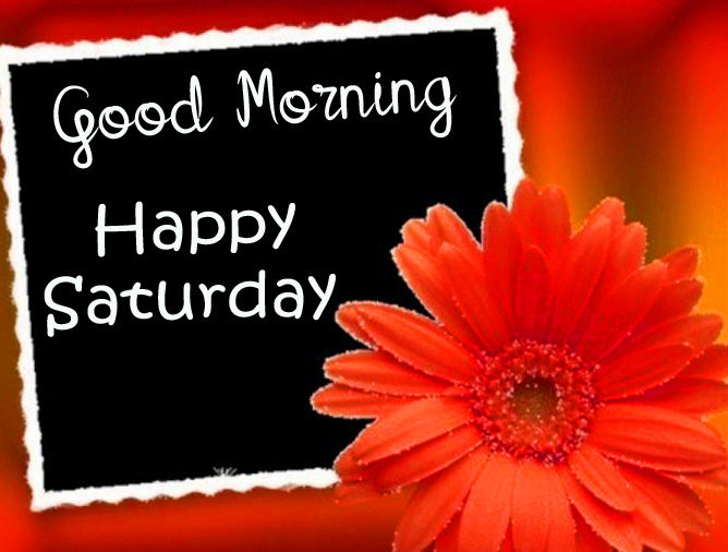 Flower Good Morning Happy Saturday Card Images