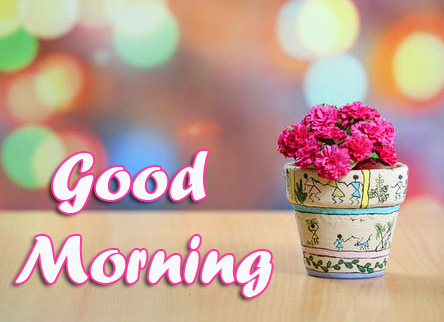 Flower Pot Good Morning Images