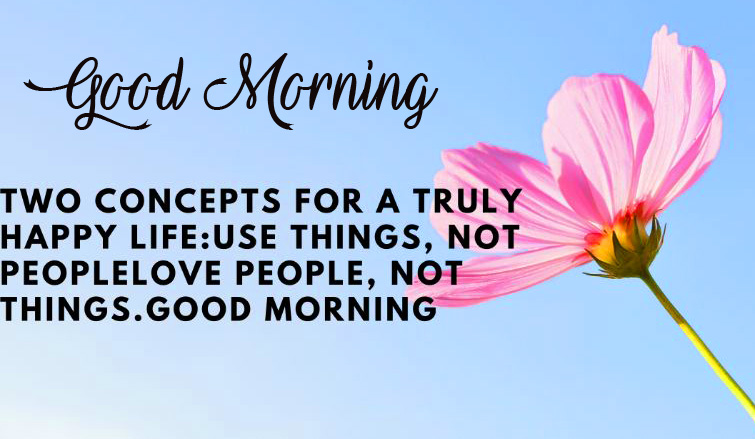 Flower with Beautiful Good Morning Quote Pic