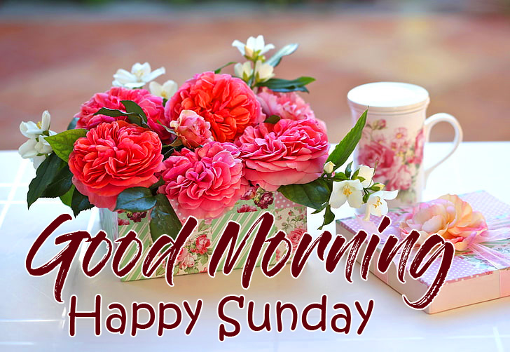 Flowers Boxes with Good Morning Happy Sunday Wish