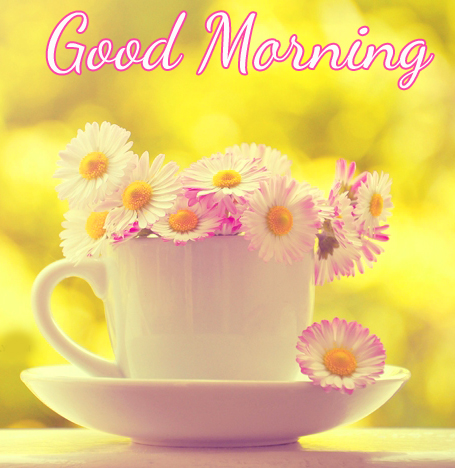 Flowers Cup with Good Morning Wish