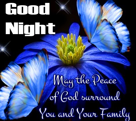 Flowers with Good Night Blessing Picture