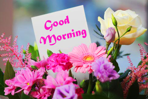 Good Morning Card With Flower Image