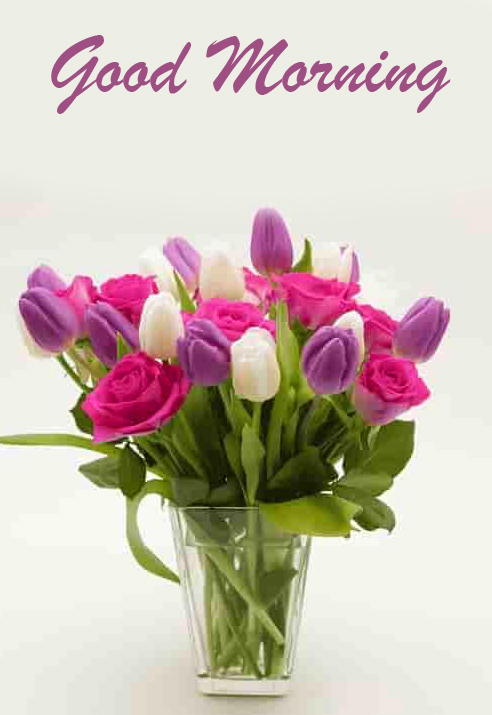 Good Morning Colorful Flowers Picture