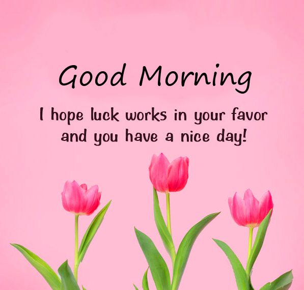 Good Morning Flowers with Quote