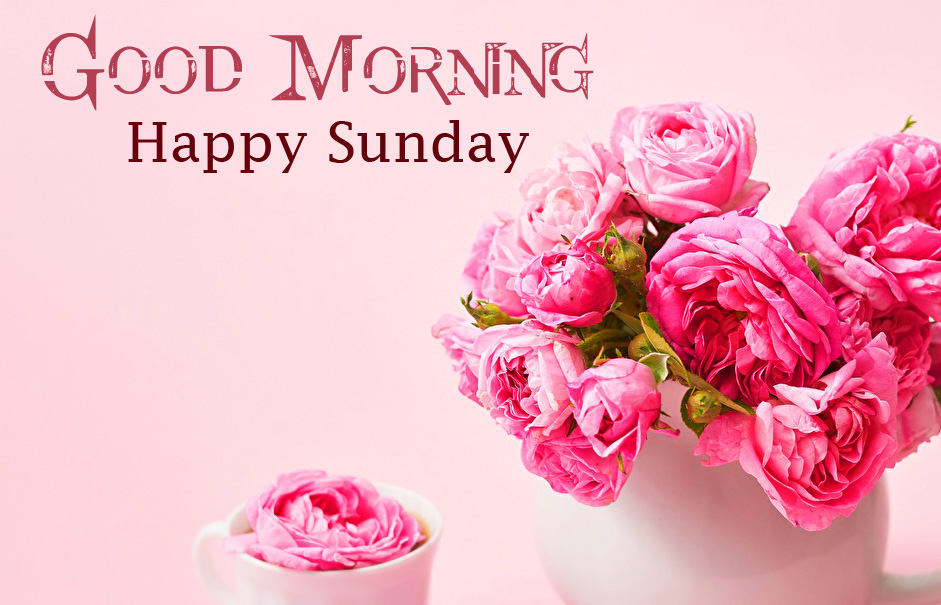 Good Morning Happy Sunday Pink Flowers Picture HD