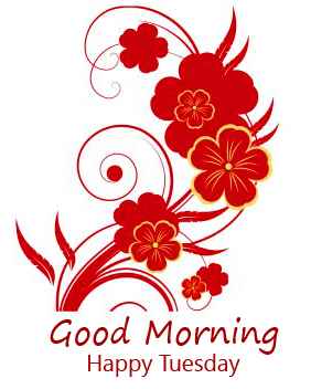 Good Morning Happy Tuesday Red Floral Wallpaper
