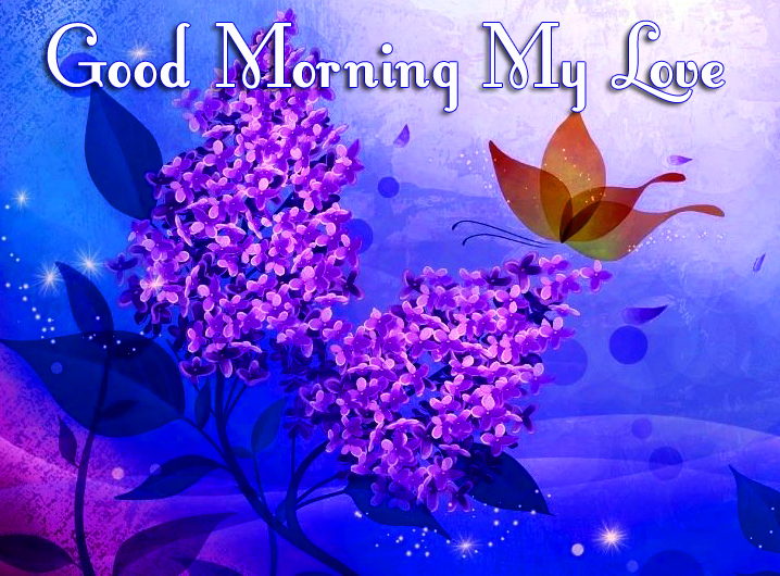 Good Morning My Love Flowers and Butterfly Picture
