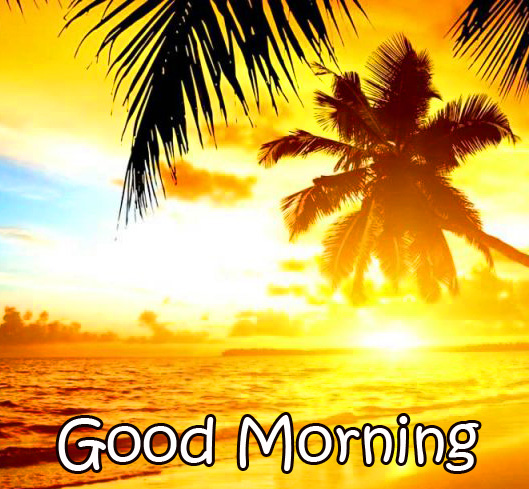 Good Morning Sunrise Image HD