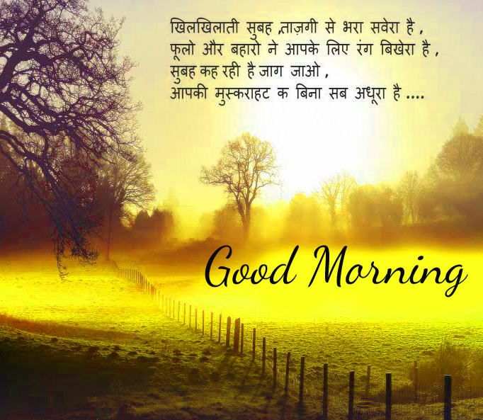 HD Beautiful Hindi Quote Good Morning Image