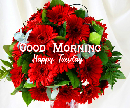 HD Flowers Bouquet Good Morning Happy Tuesday Image
