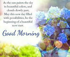 HD Flowers Quote Good Morning Picture