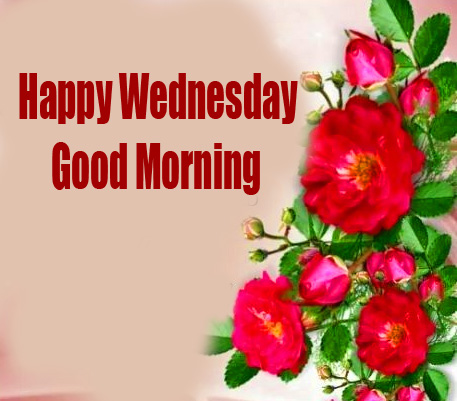 Happy Wednesday Good Morning Red Roses Wallpaper