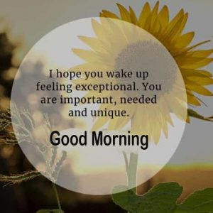 Hopeful Quote Good Morning Picture HD