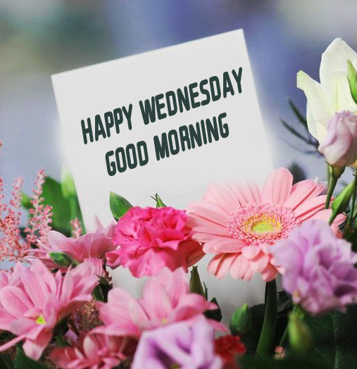 Latest Flowers Happy Wednesday Good Morning Wallpaper