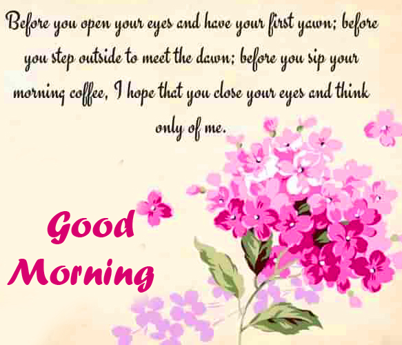 Latest Flowers with Quote and Good Morning Wish