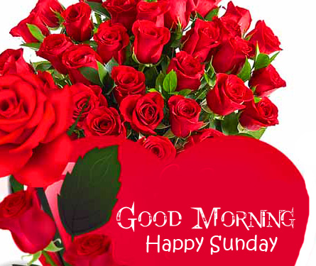 Love Red Roses Good Morning Happy Sunday Image