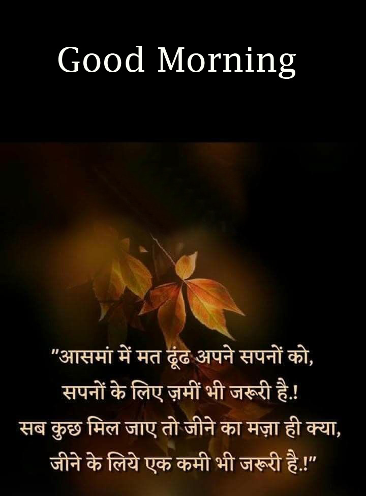 Lovely Hindi Quote with Good Morning Wish