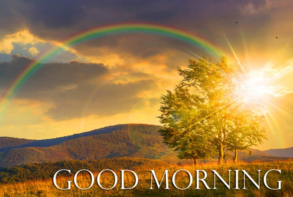 56+ Good Morning Sunrise Images (hd quality)