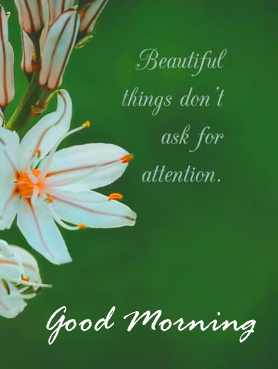 Morning Quote with Good Morning Wish