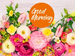 Most Beautiful Good Morning Flowers Wallpaper