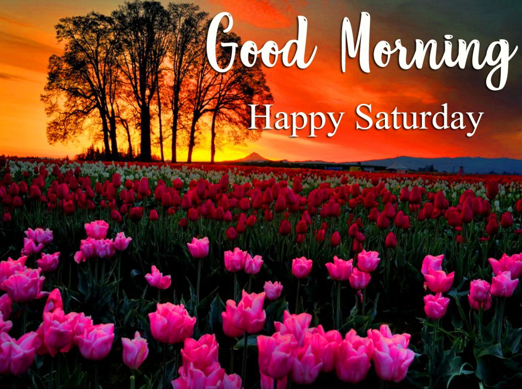 52+ Good Morning Happy Saturday Images (new photos)