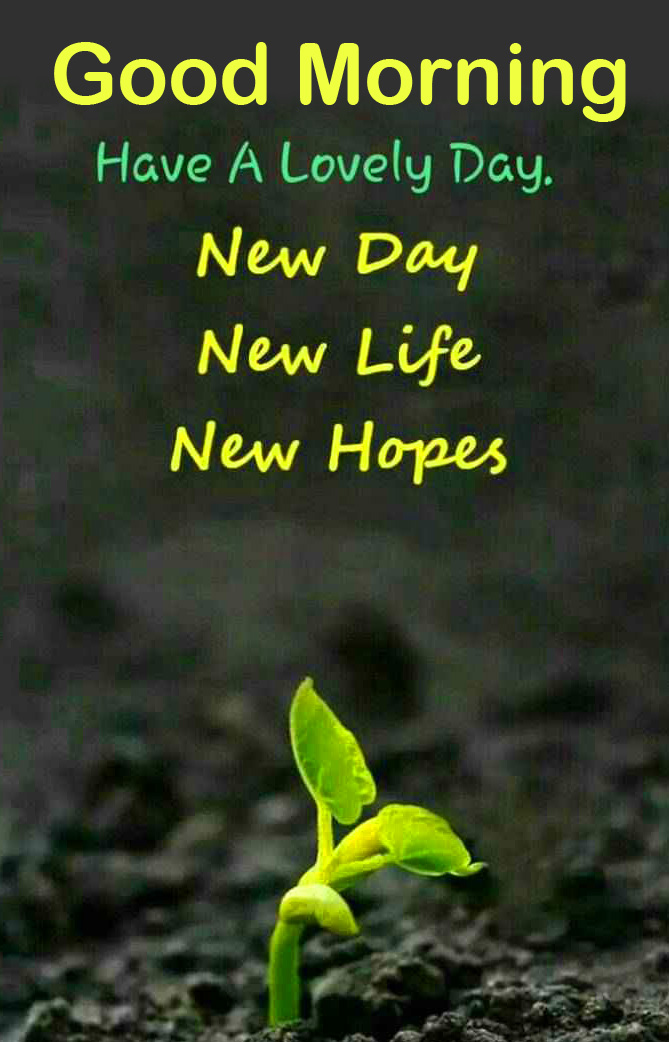 New Day Hopeful Quote Good Morning Wallpaper