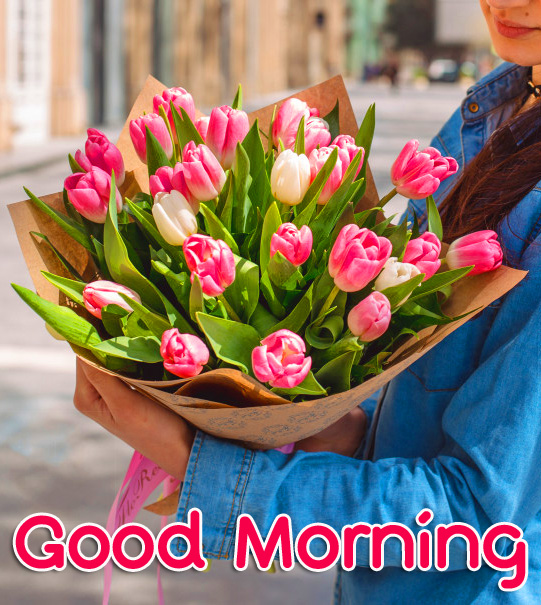 Pint Tulips Bouquet Girl Good Morning Image