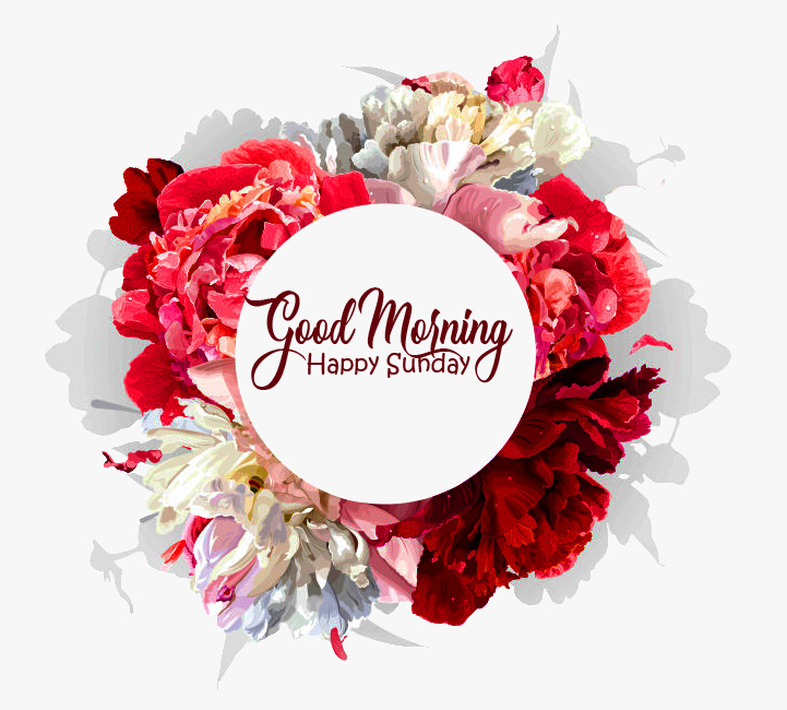Red Flowers Good Morning Happy Sunday Wallpaper