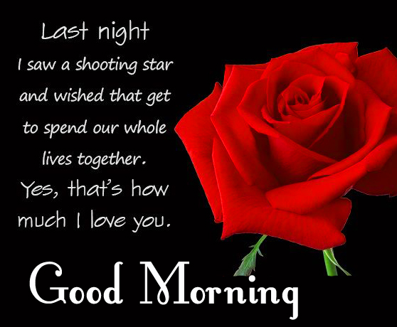 Red Rose Quote Good Morning Image